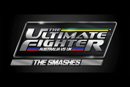 TheUltimatePosterFighterTheSmashes1